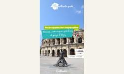 Nîmes, Camargue gardoise et pays d'Uzès numérique